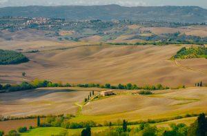 Droit de préemption rural et vente immobilière