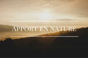 apport en nature